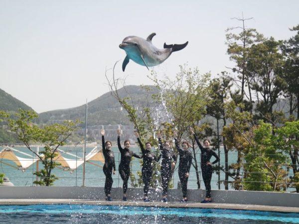 【韓國】戰爭與傷痕下的絕美風貌─巨濟島