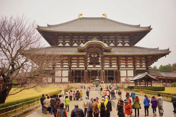 奈良小鹿森林系一日文青行程