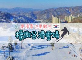 【韓國】首爾滑雪五日遊~要滑雪也要觀光,拍照打卡逛街購物一次滿足。每位只要28000元起!
