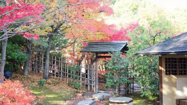 【日本】紅葉追尋日誌:名古屋市區篇