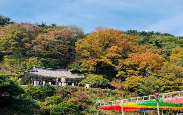 【韓國】釜山慶州