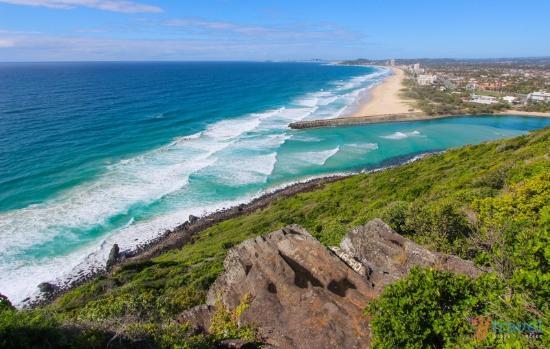 【澳洲】黃金海岸-蔚藍仲夏度假之夢,邀您漫步樹冠雨林步道!