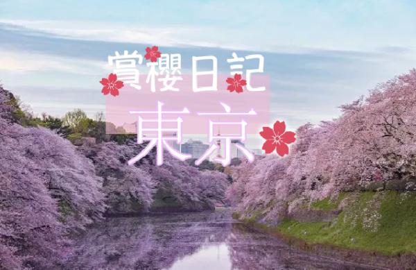 【日本】賞櫻日記:東京篇