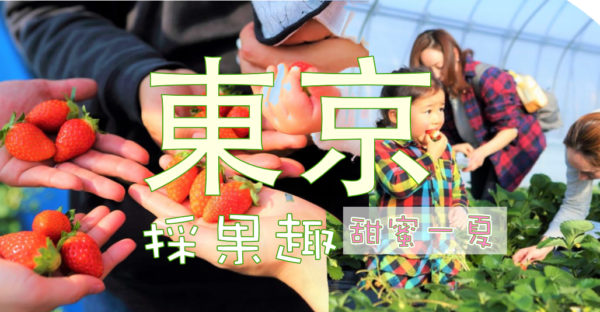 【日本】埼玉縣-距離東京車程只要一個小時的觀光果園!