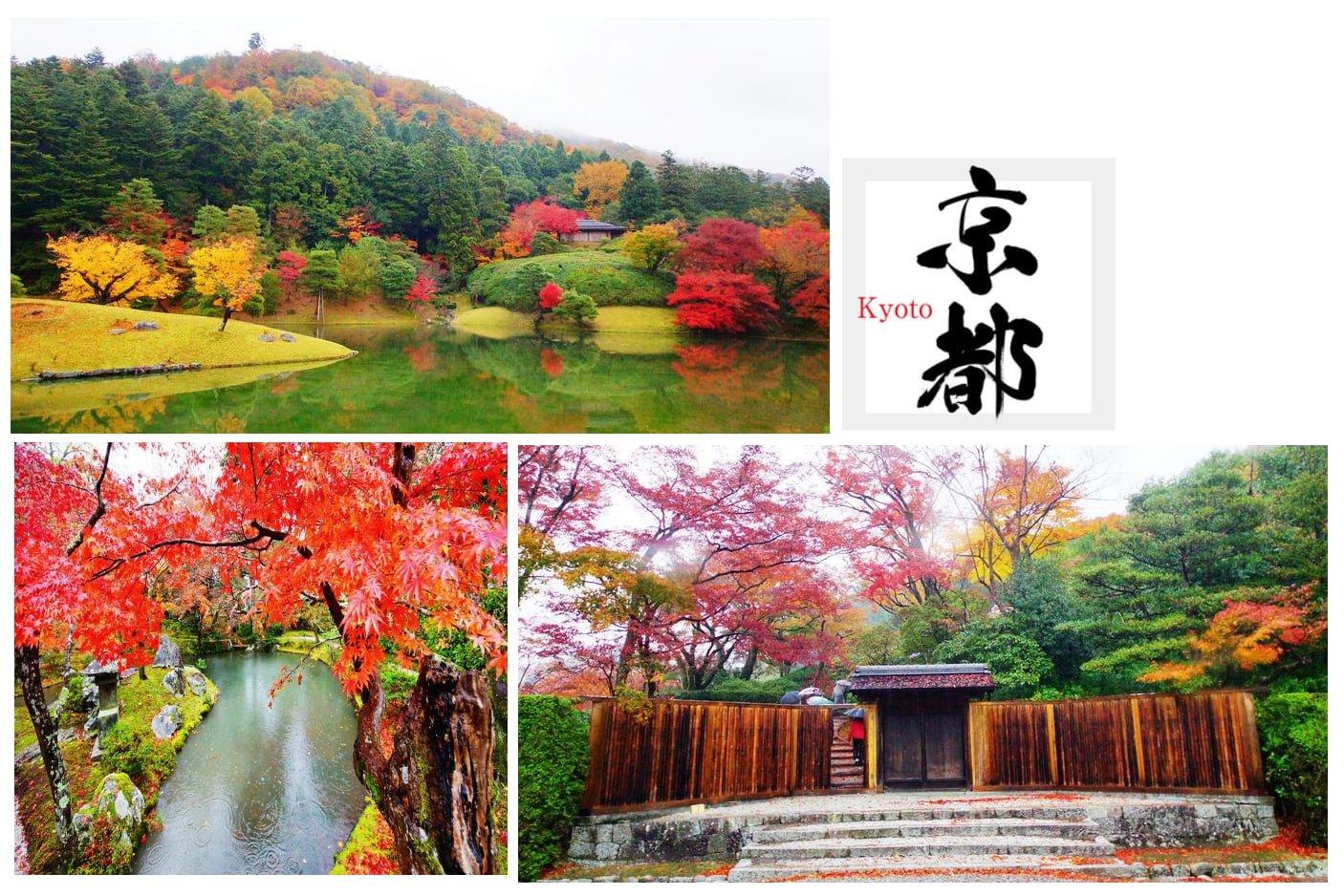 【日本】修學院離宮-霧中楓紅的皇室離宮