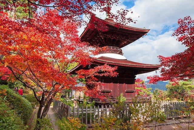 【日本】紅葉追尋日誌:京都常寂光寺篇