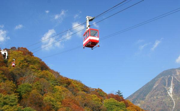 【日本】三天兩夜日光・鬼怒川溫泉,一起去旅遊!