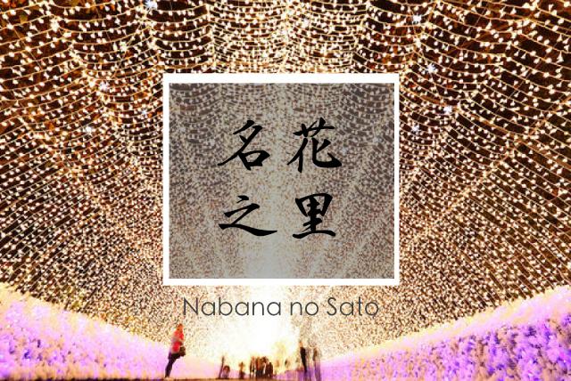 """【日本】名古屋近郊""""名花之里""""白天賞花,夜間賞燈,中部必去景點!"""