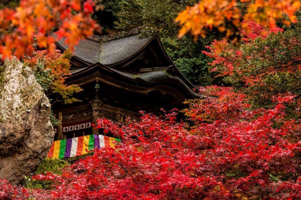 【日本】暢遊北陸再也不難,前進日本藝術文化地,入住加賀百年溫泉飯店!漫遊北陸散策行方案