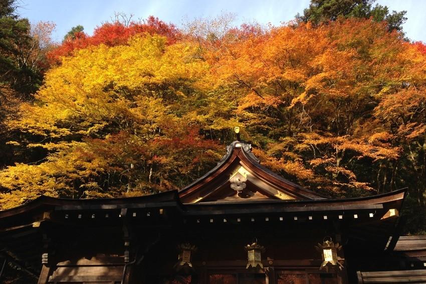 秋天的貴船神社