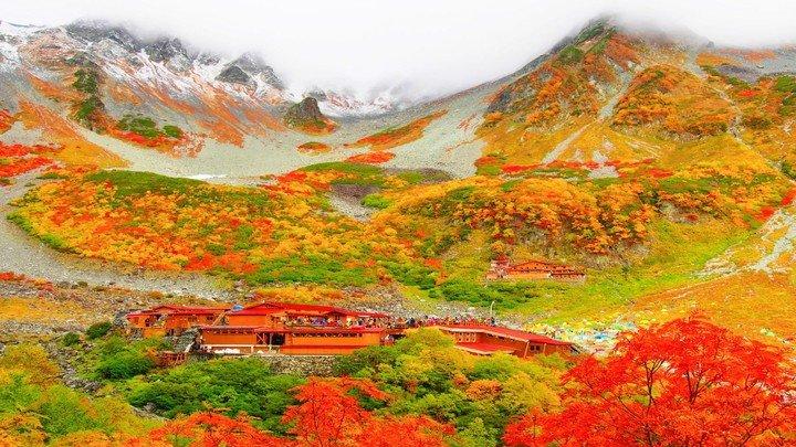 2016賞楓攻略大典!千萬別錯今年最美的楓紅季節!