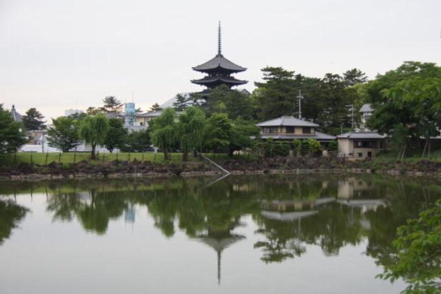 別以為奈良只有鹿,發現奈良不一樣的美景~