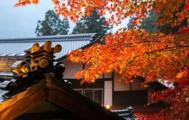 【日本】紅葉追尋日誌:下呂篇