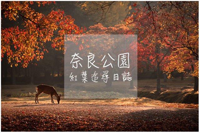【日本】紅葉追尋日誌:奈良公園篇