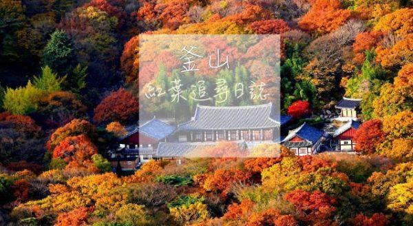 【韓國】紅葉追尋日誌:釜山篇