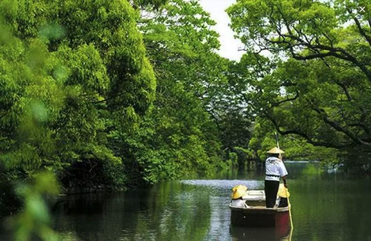 【日本】北九州親子豐富五日行程!大包小包免煩惱,包車輕鬆樂悠遊!