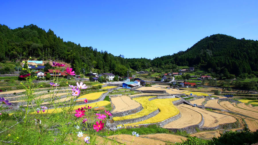 【日本】被CNN評選為日本最美的36個景點!收藏文章,期待能盡快去踩點。(上篇)