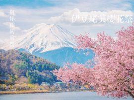 【日本】伊豆櫻花特輯!為您搜集2021年伊豆最粉嫩的櫻花景點~