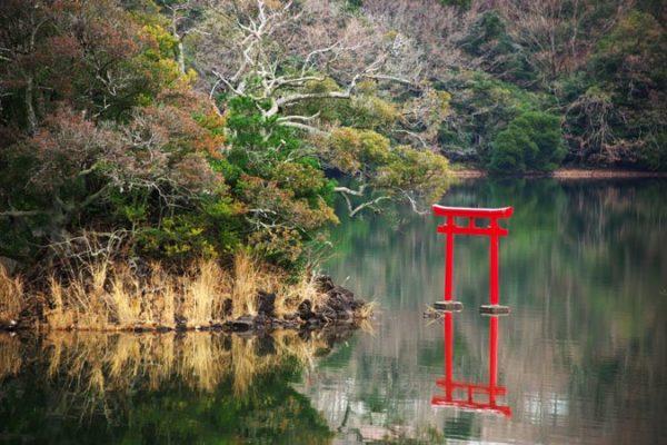 【日本】暢玩伊豆!一覽美麗海景『伊豆高原』周邊景點!