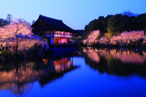 【日本】賞櫻日記:京都篇
